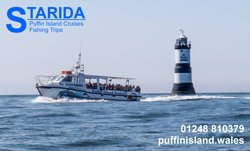 Starida Puffin Island Cruises & Sea Fishing Trips
