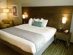 Best Western Plus Lake Charles Inn & Suites