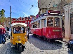 Lisbon Transports Network