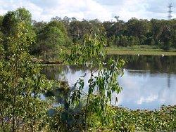 Berrinba Wetlands Park