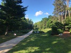 Nichols Arboretum