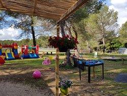 Les Poneys de Provence