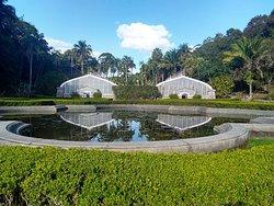 Jardim Botanico de Sao Paulo