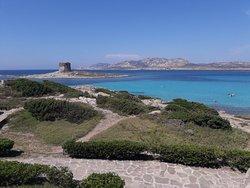 Spiaggia della Pelosetta