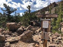 Limber Grove Trail