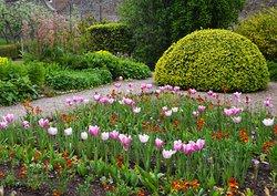 Priorwood Garden