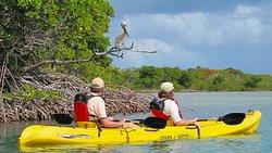 Mawella Lagoon Kayak Tour