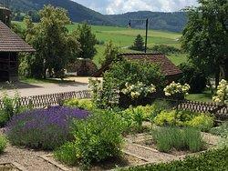 Der Gewürzgarten von Wirt Mohler