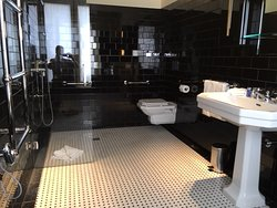 Handicap Accessible Bathroom - All other bathrooms have toilets in sep. closet