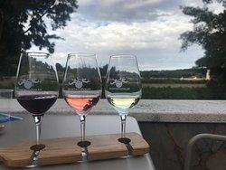 Quinta dos Vales - Wine Estate
