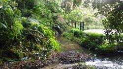 Soga Perdana Amenity Forest