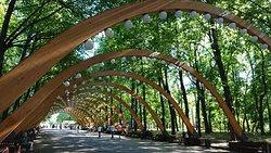 Sokolniki Park