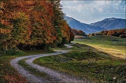 Sentiero C1 Bocca del Petroso - Forca d'Acero