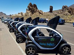 Twizy Safari