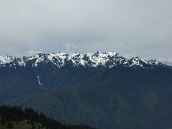 View from Hurricane Ridge Trail