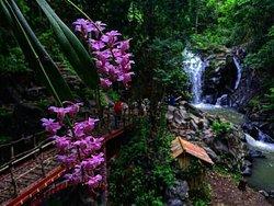 Tiu Pituq Waterfall