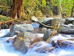 Stoney Creek Trail