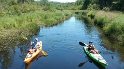 Water Walker Kayaks and Day Tours
