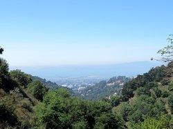 Berkeley Fire Trails