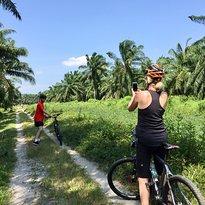 Matahari Cycle Tours & Travel