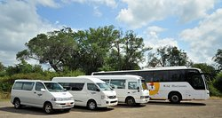 Wild Horizons Transfers and Day Tours