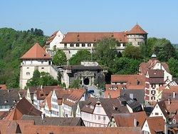 Museum Schloss Hohentuebingen (Museum Ancient Cultures)