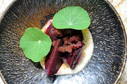 Beetroot, miso, tofu, rose petals
