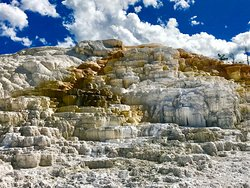 See Yellowstone Tours