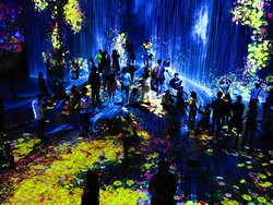 teamLab Borderless