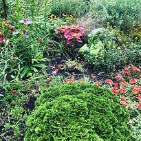Mary Livingston Ripley Garden