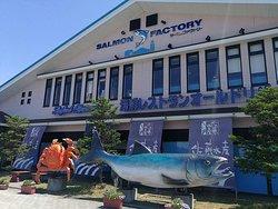 Salmon Factory