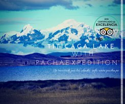 Pacha Expedition