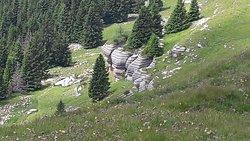 Monte Fior e Monte Castelgomberto