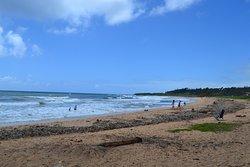 Kealia beach, Kaua'i