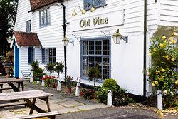 The Old Vine