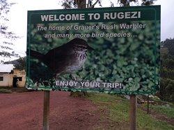 Rwanda is one of Africa's best destinations for bird watching.