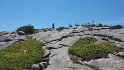 Cadillac Mountain North Ridge Trail
