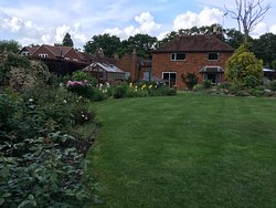 Really lovely garden to sit and relax