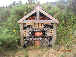 Bug House (Glaslyn Wildlife Centre)