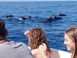 Eco Adventures Puerto Escondido