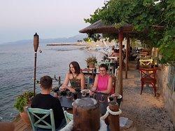 Med Cafe & Restaurant