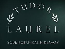 Tudor Laurel