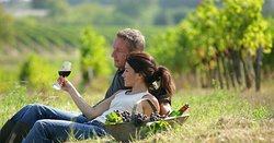 Pure & Genuine Relax in the Vineyard.