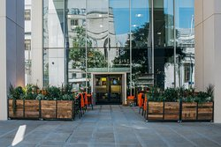 The Anthologist St Peters Square
