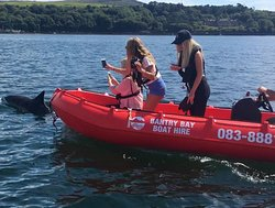 Bantry Bay Boat Hire