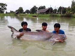 Buriram Monsters Fishing Park