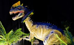 Theme Park and Dinosaurs Museum