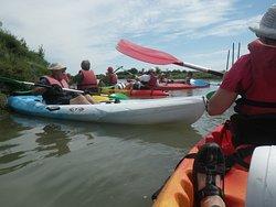 Seudrement Kayak Day Tours