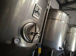 The Dorset Brewing Company