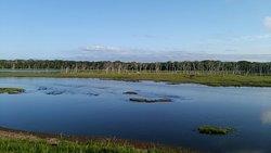 Notsuke Peninsula